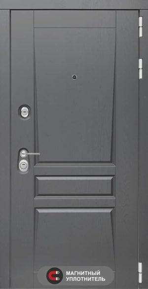 Входная дверь PLATINUM